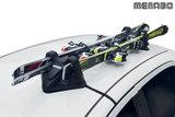 Shuttle - magnetische skidrager geschikt voor 2 paar ski's _15